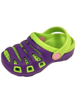 Сабо TINGO. Цвет: темно-фиолетовый, салатовый