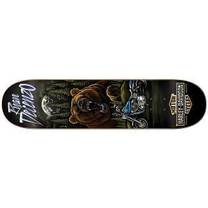 Дека для скейтборда  Harley-davidson Vintage Plg 31.8 x 8.125 (20.6 см) Darkstar. Цвет: мультиколор,черный