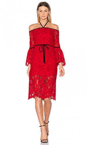 Платье odette Alexis. Цвет: красный