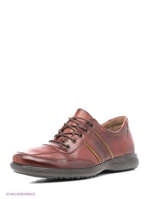 Ботинки BELWEST. Цвет: темно-красный, красный, темно-коричневый