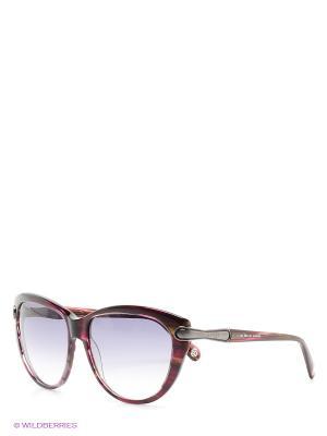 Солнцезащитные очки Enni Marco. Цвет: бордовый