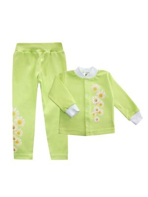 Набор одежды: кофточка, леггинсы Коллекция Ромашки КОТМАРКОТ. Цвет: салатовый