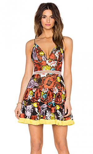 Мини платье yiana Alexis. Цвет: оранжевый