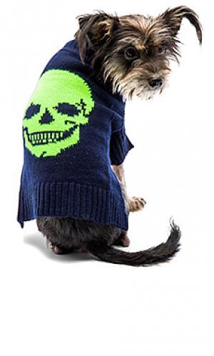 Свитер для собаки с рисунком череп 360 Sweater. Цвет: синий