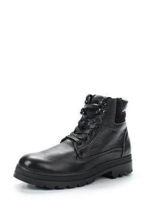 Ботинки Destra. Цвет: черный