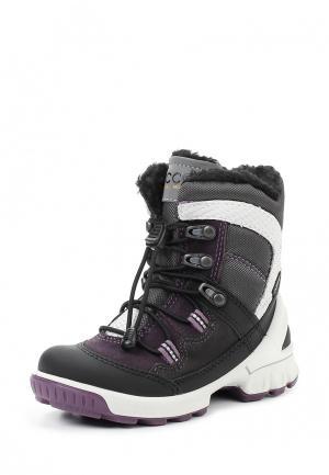 Ботинки BIOM HIKE KIDS ECCO. Цвет: разноцветный