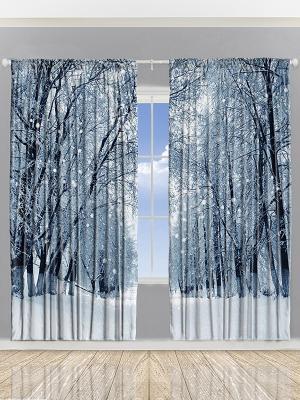 Фотошторы Красота деревьев, 290*265 см Magic Lady. Цвет: синий