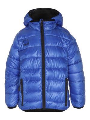 Куртка Molo. Цвет: синий