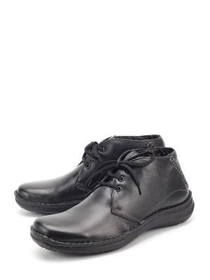 Ботинки BERTEN. Цвет: черный