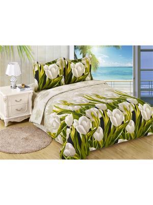 Постельное белье Tulpan 2,0 сп. Amore Mio. Цвет: бежевый, белый, зеленый