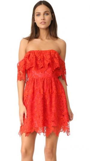 Платье Dream Vacay Lovers + Friends. Цвет: красный