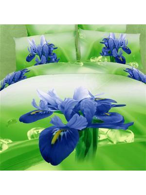 Постельное белье Iris 2,0 сп.Euro Buenas Noches. Цвет: зеленый, фиолетовый