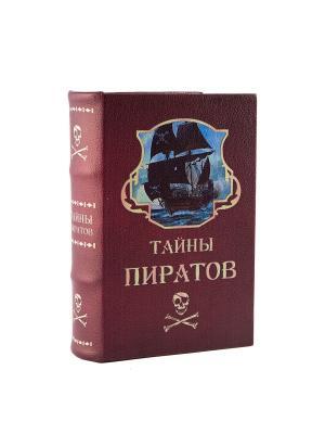 Копилка-сейф Тайны пиратов 24*17*6см Русские подарки. Цвет: терракотовый