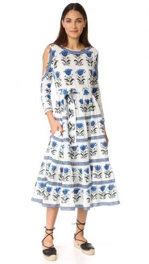 Платье Alexis Rhode Resort. Цвет: голубой цветок