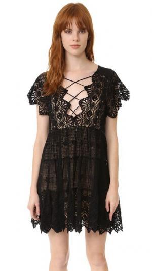 Мини-платье Romance Jen's Pirate Booty. Цвет: полночный ритуал