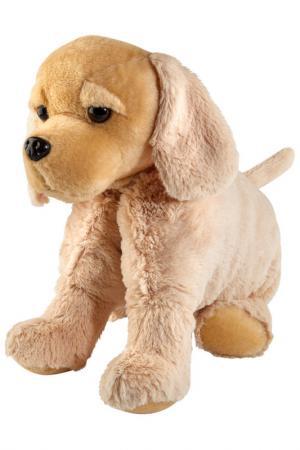 Подушка Собака Mister Christmas. Цвет: бежевый
