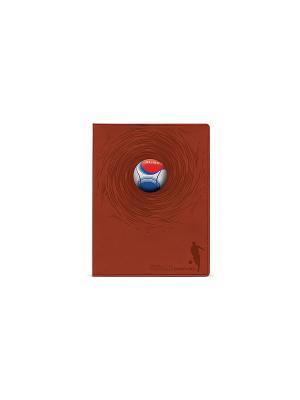 Тетрадь общая 96 листов серия ФУТБОЛЬНЫЕ МЯЧИ Альт. Цвет: синий