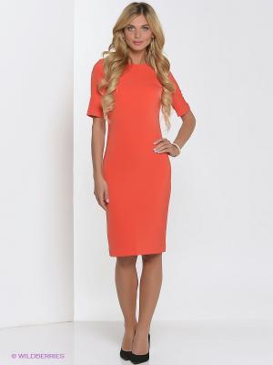 Платье Культ платья BRACEGIRDLE. Цвет: оранжевый