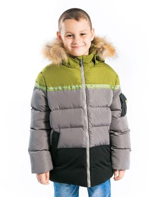 Куртка Арсений Аксарт. Цвет: оливковый, серый, черный