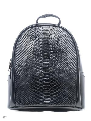 Рюкзак Malvinas. Цвет: черный