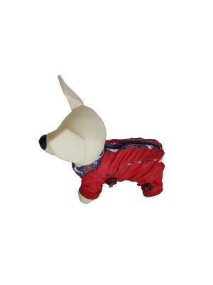 Дождевик Doggy Style. Цвет: красный