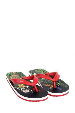 Цветные пляжные шлепанцы с принтом Dolce&Gabbana Children. Цвет: multicolor