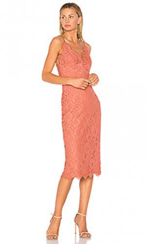 Платье-комбинация ingenue Lover. Цвет: розовый