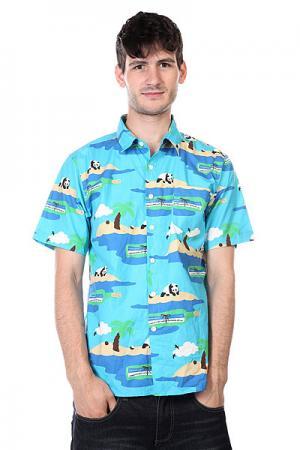 Рубашка  Social Status Turquoise Enjoi. Цвет: голубой,синий