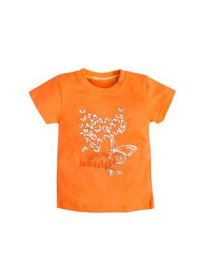 Футболка Машук. Цвет: оранжевый