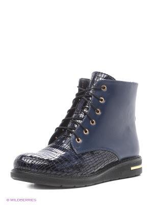 Ботинки Dimenni. Цвет: темно-синий