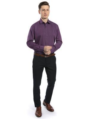 Рубашка GroStyle. Цвет: темно-фиолетовый, лиловый