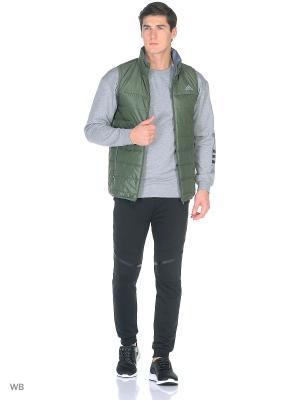 Жилет BC PAD VEST BASGRN Adidas. Цвет: зеленый