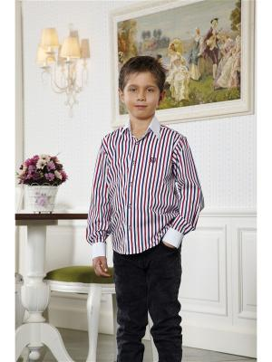 Рубашка Ilgaz kids. Цвет: белый