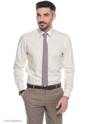 Рубашка Conti Uomo. Цвет: молочный