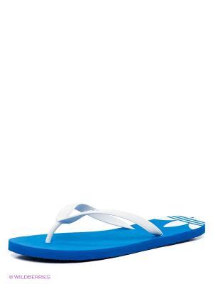 Пантолеты Adidas. Цвет: белый, синий