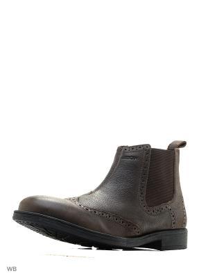 Ботинки GEOX. Цвет: темно-коричневый
