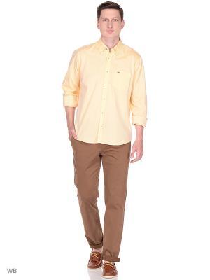 Рубашка Webb & Scott co.. Цвет: желтый