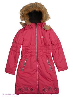 Пальто Gusti. Цвет: розовый