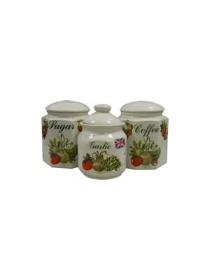Набор из 3-х банок чай + печенье+сахар Овощи Sestesi. Цвет: белый