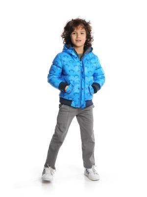 Куртка Appaman. Цвет: голубой, серый