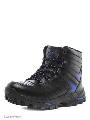 Ботинки Sigma. Цвет: черный, синий