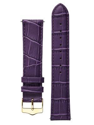 Классический ремешок для часов из кожи теленка с фактурой под аллигатора. Ширина 16 мм Signature. Цвет: фиолетовый