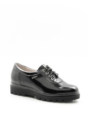 Туфли BELWEST. Цвет: черный