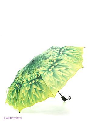 Зонт RAINDROPS. Цвет: зеленый