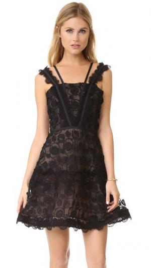 Платье Mindy Alexis. Цвет: черное кружево