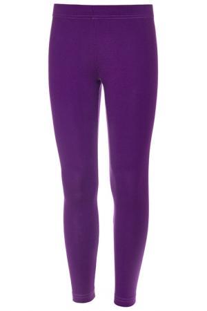 Лосины M&D. Цвет: фиолетовый