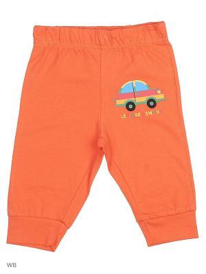Брюки WonderKids 172775/Оранжевый