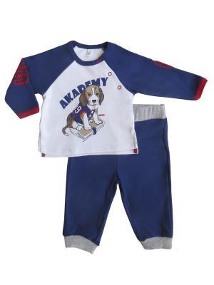 Комплект (джемпер+брюки), Спортивная Академия Soni kids. Цвет: темно-синий