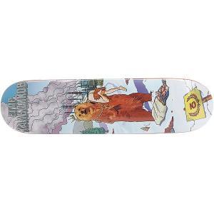 Дека для скейтборда  Кальдиков Multi 31.5 x 8 (20.3 см) Юнион. Цвет: мультиколор