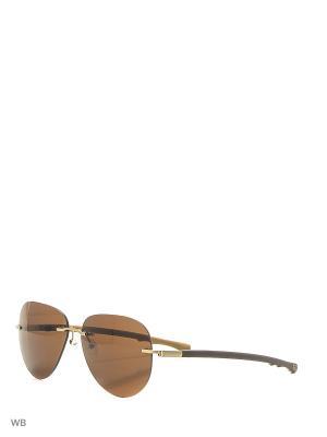 Солнцезащитные очки CX 816 GD CEO-V. Цвет: коричневый, хаки